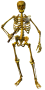 mob_lesser_skeleton.png