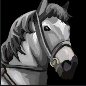 white_horse.png