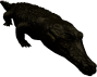 mob_level_36_dire-crocodile.png