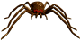 mob_huntsman_spider.png