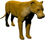 mob_level_22_lioness.png